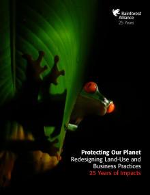 25-årsrapport sammanfattar effekten av Rainforest Alliance arbete