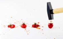 Bæredygtige kvalitetsnyheder på fødevarekonference
