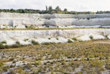 Material från dinosauriernas tid undersöks i Limhamns kalkbrott