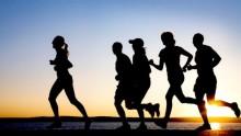 Obligatorisk träning på arbetstid ska ge Rotpartner konkurrensfördelar.