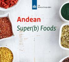 Activity agenda Peruvian super(b) foods sector 2018