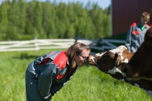 Tuottajien omistamat yhdistävät voimansa: A-Rehu, Maitosuomi, Länsi-Maito ja Pohjolan Maito aloittavat yhteistyön rehukaupassa