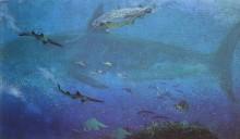 Antarktis sista hajar