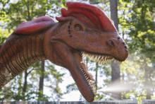 Skräcködlorna är tillbaka – Nya dinosaurier i Parken Zoo Eskilstuna premiärvisas 17 april