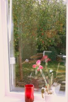 Smarta fönster kan minska energibehov