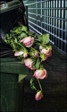 "Terese Hansen: ""Morgan - du fick aldrig dina rosor!"""