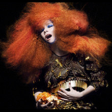 Björks Biophilia-album får premiere på Icelandair-fly