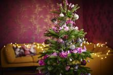 Joululla on perinteitä, mutta ei sääntöjä