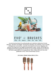 evo- BRUSHES