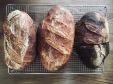 Børn & Brød på Ærø