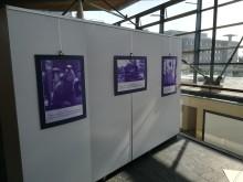 Stroke photography launches Make May Purple in Wales | Ffotograffiaeth Strôc yn lansio Troi Mai yn Borffor yng Nghymru