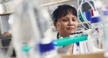 Blodstamcellstransplantation effektivaste behandlingen vid skovvis MS