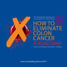 """Heidelberger Roadmap für ein Leben ohne Darmkrebs Dritter internationaler Workshop """"Innovations in Oncology"""""""