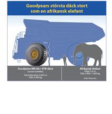 Goodyears största däck stort som en elefant!