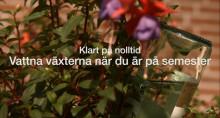 Bakker.com lanserar videor med inspiration, tips och knep till trädgården!