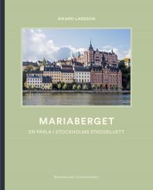 Träkåkar, vidunderlig utsikt och en historisk brand – det handlar om Stockholms hetaste stadsdel
