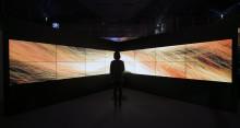UNITY of MOTION; Digital Art using Boids - an artificial life program