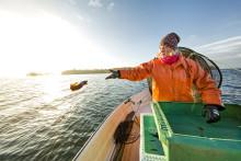 Delta på webinar om FNs bærekraftsmål 14: Liv under vann