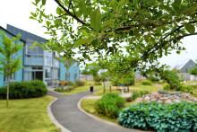 Sveriges första demensby skapas i Vellinge