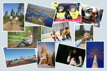Världens bästa vardag - ny vision för Norsjöbygden