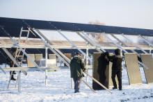 Nu går det att bygga en solcellspark på bara en vecka
