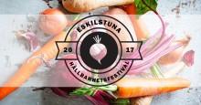 Eskilstunas första hållbarhetsfestival