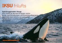 IKSU frilufts arrangerar Späckhuggarsafari i Norge