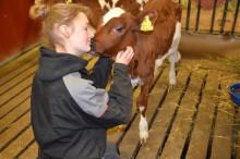 Antalet ansökningar till Torstas lanbruksprogram ökar med 60% i år