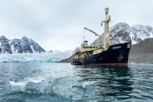 Svalbardbilder på Stadsbiblioteket