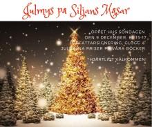 Öppet Julhus på Siljans Måsar
