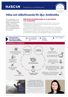 HKScan - Faktablad om Antibiotika