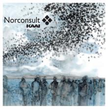 Norconsult-KAAI ønsker glædelig jul og et godt nytår