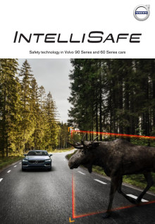 IntelliSafe factsheet SPA