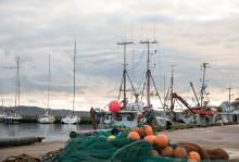 EU och Norge överens om fiskekvoter för 2018