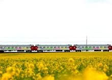 Enorm efterfrågan på tågresor till Europa – så skapar vi möjligheter för fler att resa