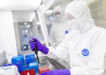 DNA från Dödahavsrullarna ger ledtrådar till historiska gåtor