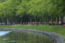 Blodomloppet Stockholm går emot strömmen – ökar igen