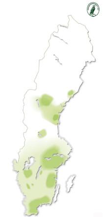 karta över var kronhjort finns i landet