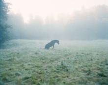 Agnes Thor visar fotografier på utställning i Lindesberg