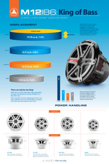 "JL Audio - M-Series 12"" Subwoofer flyer"