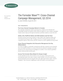 The Forrester Wave™:Cross-Channel Campaign Management Platforms, Q3 2014