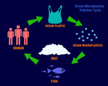 Microplastic tsunami looms ever larger, but Bluewater technology can mitigate risks