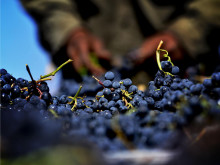 Winemakers dinner