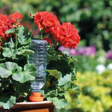 Smart blomvattnare av keramik!