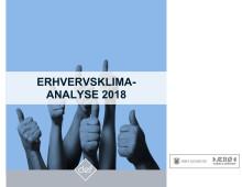 Analyse: Erhvervsklimaanalyse Ærø November 2018