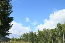 Landstinget Dalarna ska minska sina växthusgaser