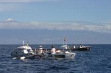 Team Prosecta har 44 mil kvar eller 240 NM på Atlanten