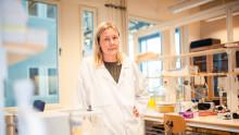 Kampradstiftelsen stöder forskning om hållbara förpackningsmaterial