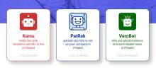 Uusi chatbot-palvelu ulkomaalaistaustaisille yrityksen perustajille
