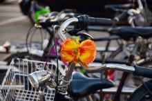 Herrentag – Feiern ja, Fahrrad nein!